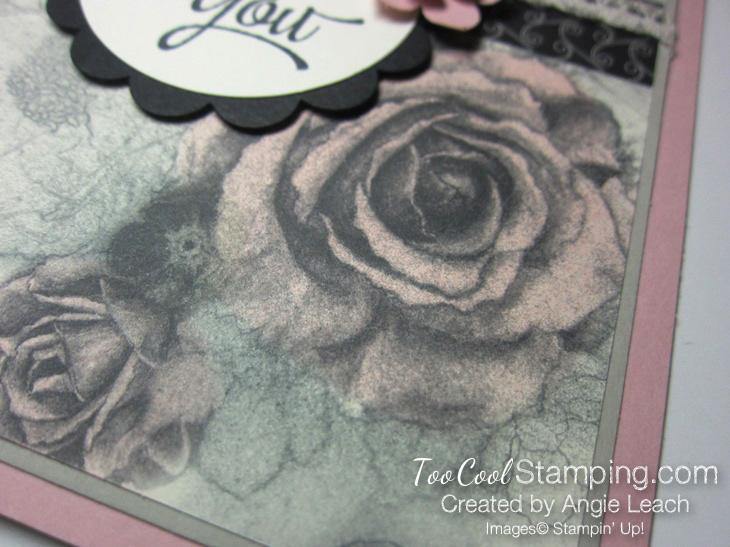 Timeless elegance tinted roses - blush2