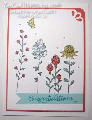 Flowering fields congrats - v1 copy