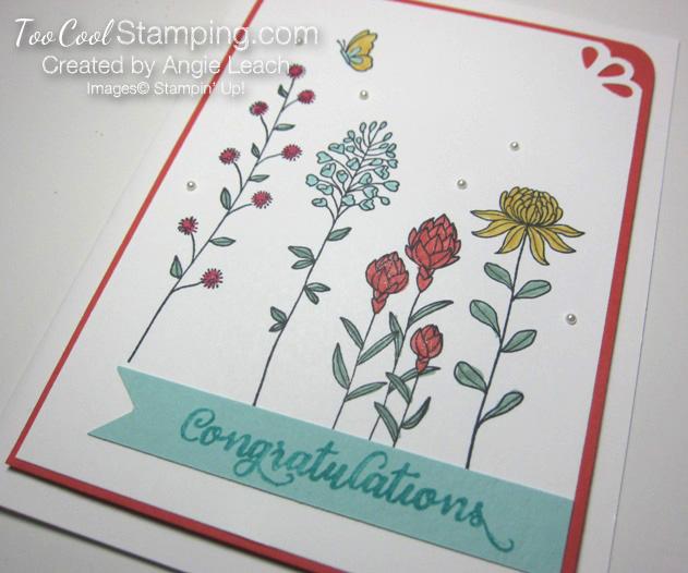 Flowering fields congrats - v2 copy