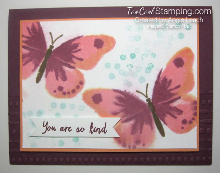 Watercolor wings spritz - razzleberry