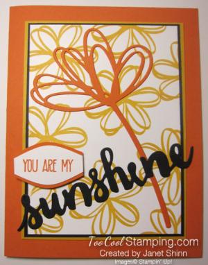 Janet - sunshine wishes