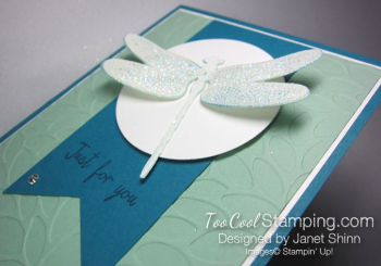 Janet - dragonfly pop-up 2