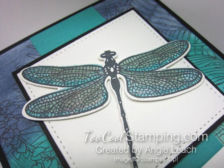 Inside The Lines Dragonflies - bermuda 2.5