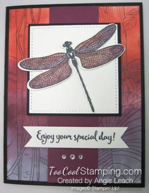 Inside The Lines Dragonflies - razzleberry