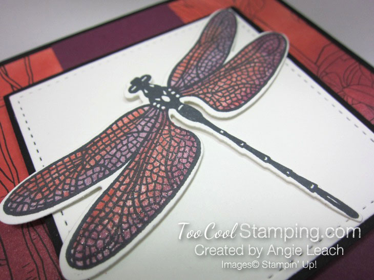 Inside The Lines Dragonflies - razzleberry 2