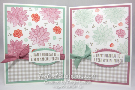 Succulent Gingham Birthday - two cool
