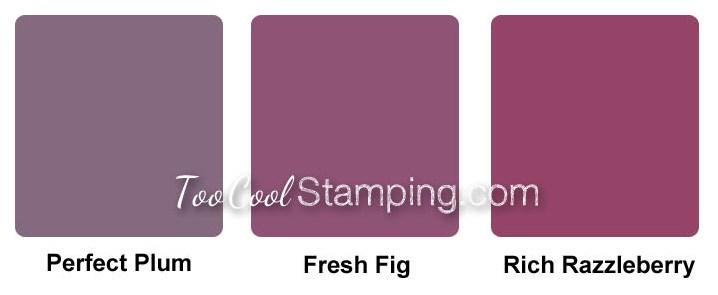 Fresh Fig Comparison final