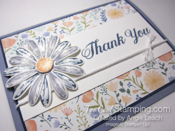 Daisy delight thank you - wisteria 2