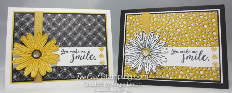 Daisy delight pick a pattern - two cool