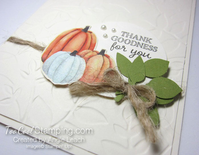 Pumpkin Harvest - thank goodness 2