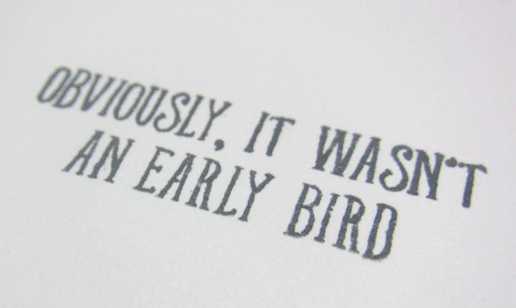 Bird banter early bird quip