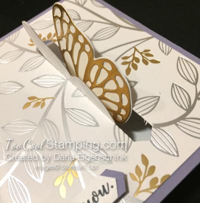 Darla butterfly closure 2