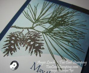 Snow scene - pine v2