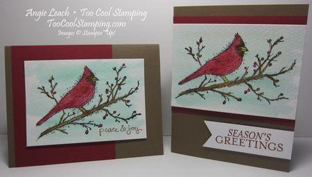 Beauty cardinal - two cool
