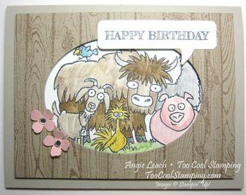 From the herd - happy birthday