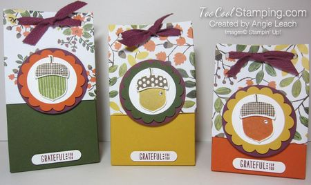 Acorn gift bag-3 bags2