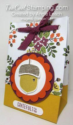 Acorn gift bag-bag B