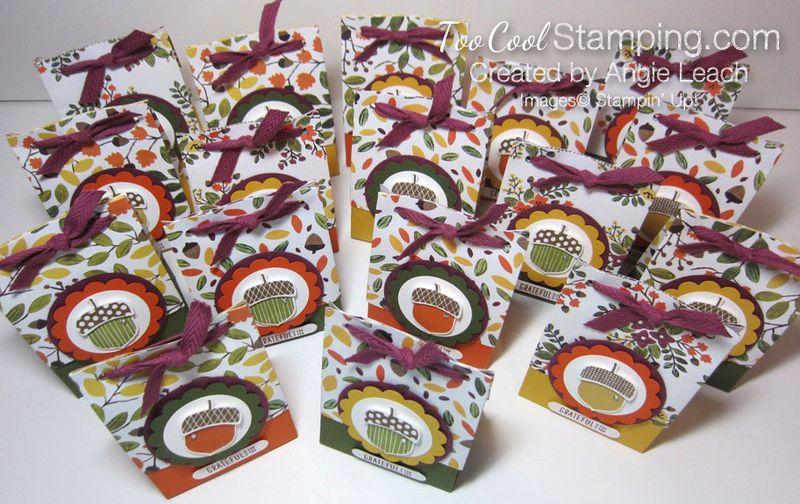 Acorn gift bag-toocool