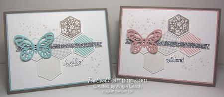 Hexagon butterfly - two cool