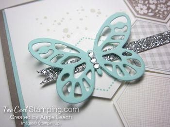 Hexagon butterfly - pool3