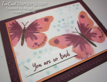 Watercolor wings spritz - razzleberry 2
