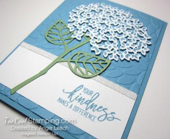 Thoughtful branches hydrangea - marina mist 3