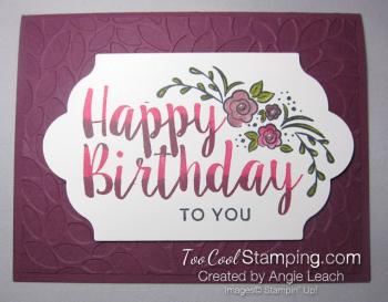 Big on Birthday Two-Tone - Razzleberry
