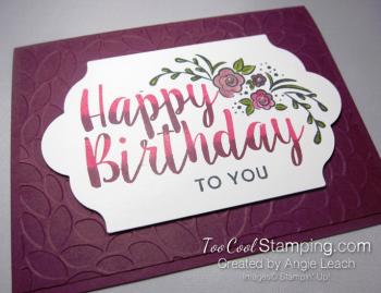 Big on Birthday Two-Tone - Razzleberry 2