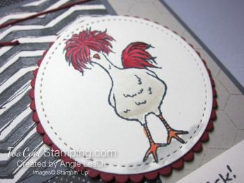 Hey chick chicken wire - funky chicken 2