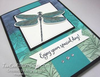 Inside The Lines Dragonflies - bermuda 2