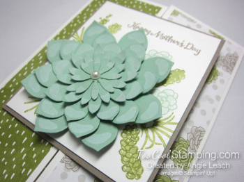 Oh so succulent gate fold - olive 3