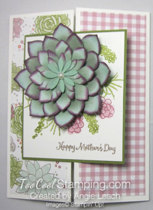 Oh so succulent gate fold - sugarplum 1