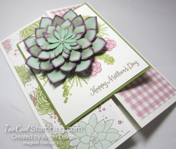 Oh so succulent gate fold - sugarplum 3