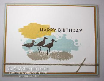 Amy - wetlands masculine birthday