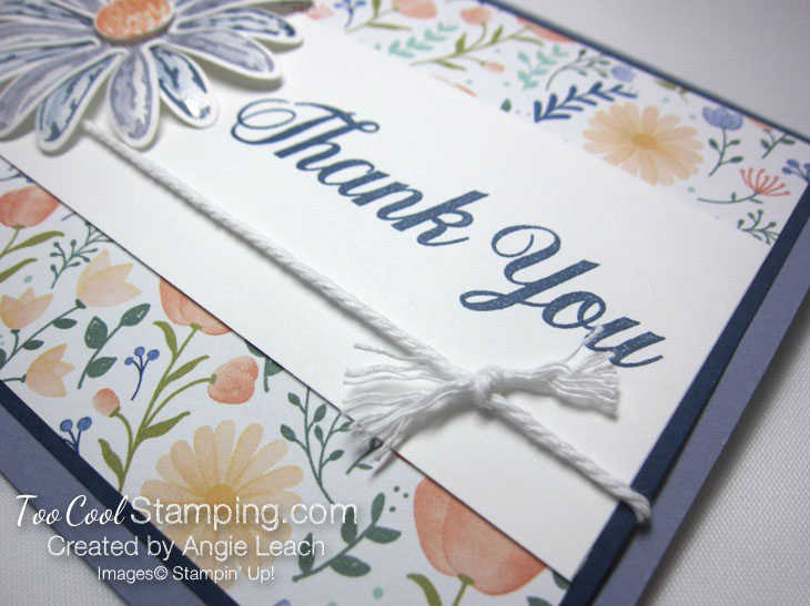 Daisy delight thank you - wisteria 4