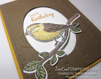 Kathe - best birds 2