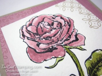 Graceful Garden watercolor - sweet sugarplum 3
