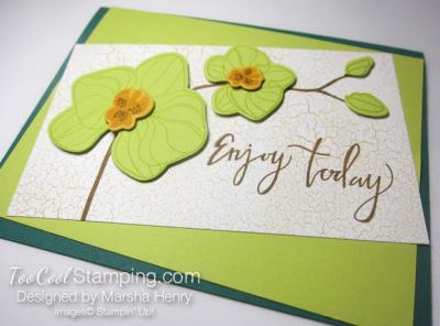 Marsha Orchid 2