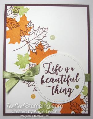 Colorful seasons falling leaves - fig