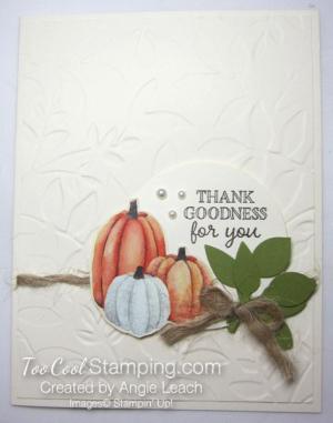 Pumpkin Harvest - thank goodness