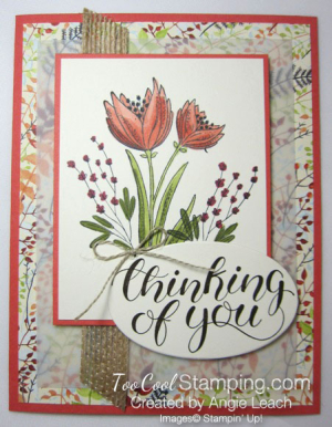 Count My Blessings with Blends - coral
