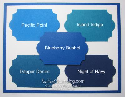 Blueberry Bushel