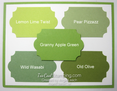 New - granny apple green