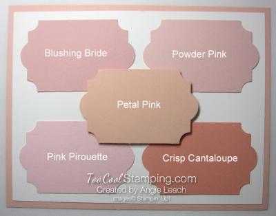 New - petal pink