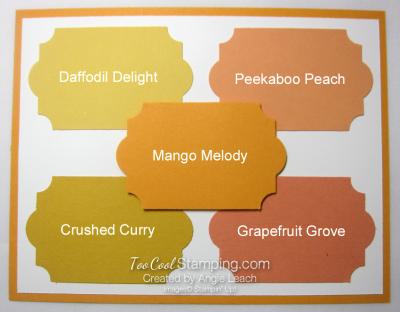 New - mango melody