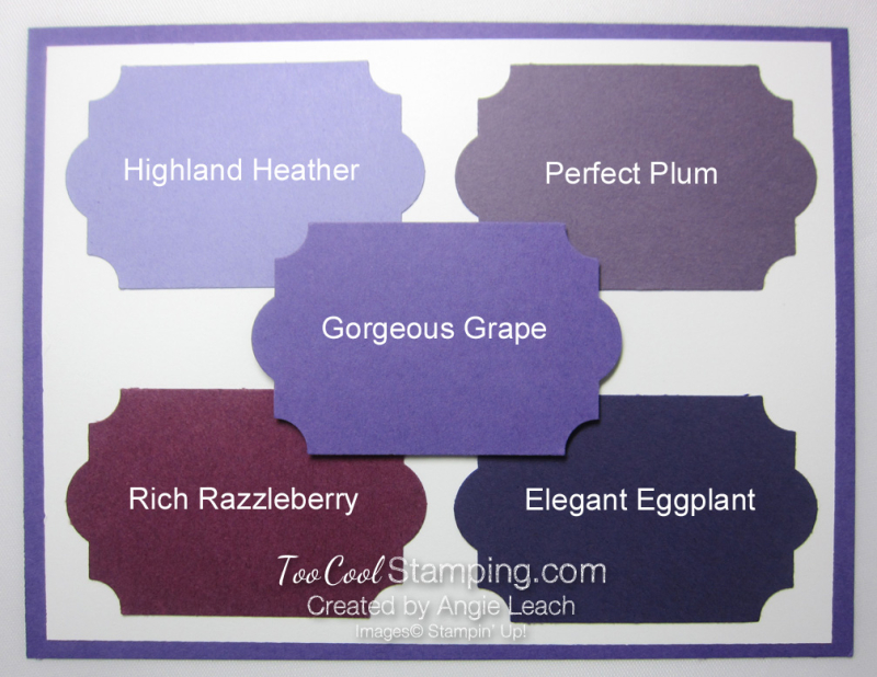 New - gorgeous grape