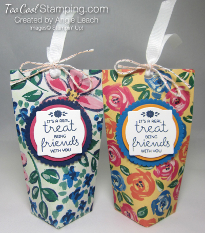 Mini square bottom treat pouch - two cool 1