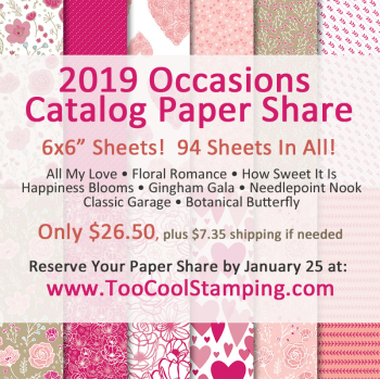 2019 Occasion Paper Share Banner 1