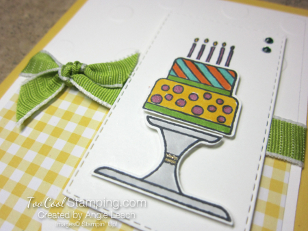 Piece of Cake - gingham birthday 3