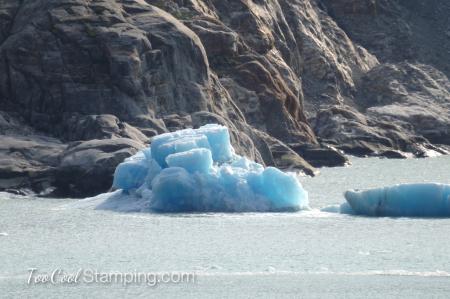 Dawes Glacier - floating iceberg